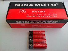 Minamoto R6(AA) 4/60/1200/